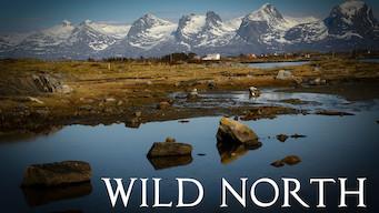 Wild North (2015)