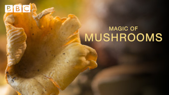 The Magic of Mushrooms (2014)