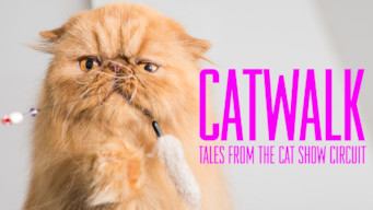 Catwalk: Tales from the Cat Show Circuit (2018)