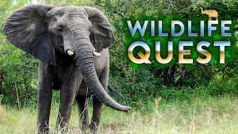 Wildlife Quest (2016)