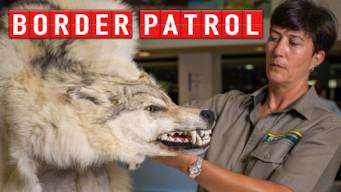 Border Patrol (2016)