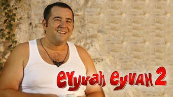 Eyyvah Eyyvah 2 (2011)
