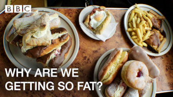 Why Are We Getting So Fat? (2016)