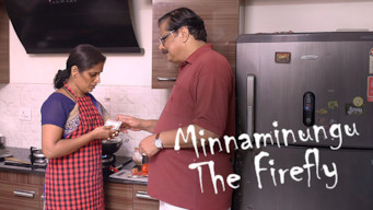 Minnaminugu the FireFly (2017)