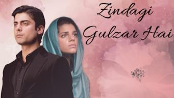 Zindagi Gulzar Hai (2012)