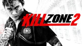 Kill Zone 2 (2015)