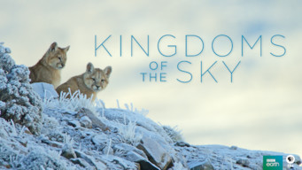 Kingdoms of the Sky (2018)