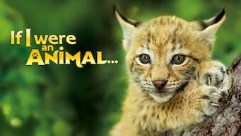 If I were an Animal (2018)